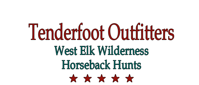 West Elk Wilderness Hunting in Gunnison Country USA